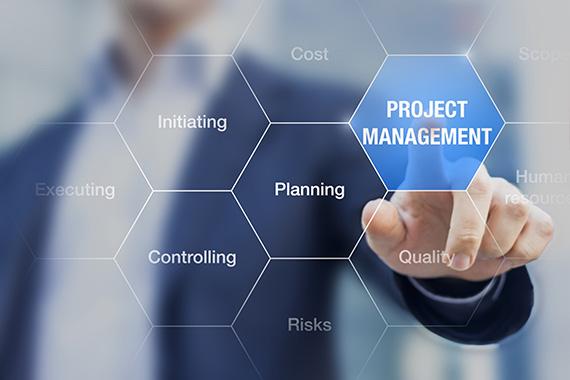 Project Management - Fruition Designs